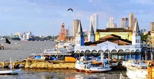 voyage_bresil_marche_ver_o_peso_port_de_peche_belem_2