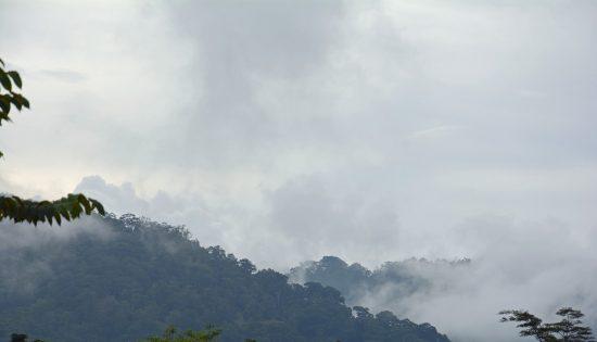 sumatra-indonesia