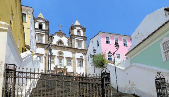 brazilwood-1433421_1920