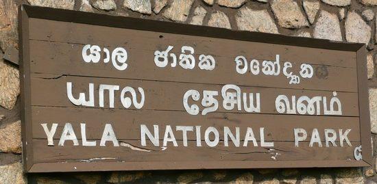 voyage-srilanka_voyage_sri_lanka_parc_yala