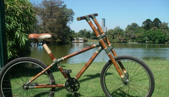 bambucicleta