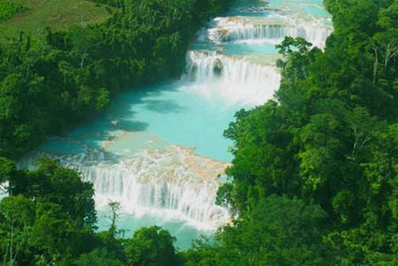 Agaua Azul Chiapas