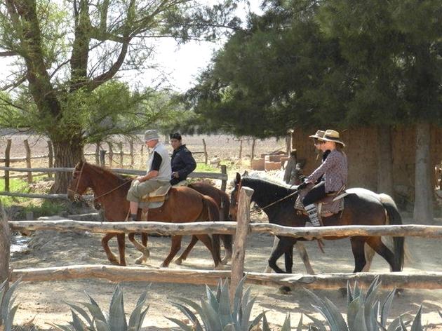 voyage argentine, san carlos, rando à cheval