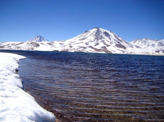 voyage chili, salar d'atacama, reserve de los flamencos, lagune de Miscanti