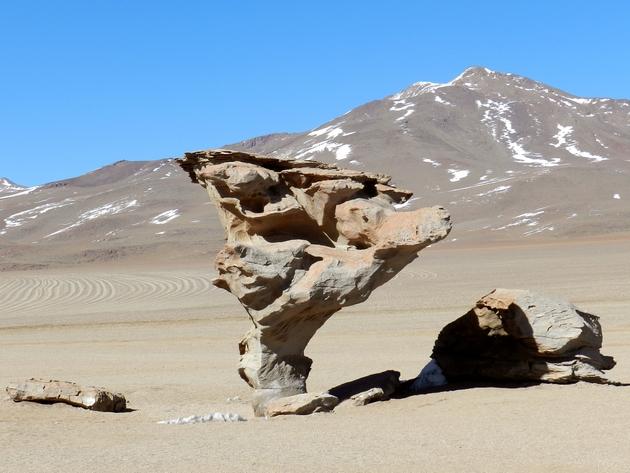 Arbre de pierre (arbol de piedra) dans le Sud Lipez bolivien