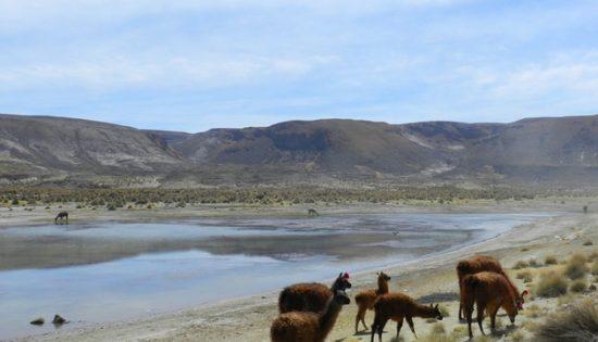 Cordillere los Frailes en Bolivie