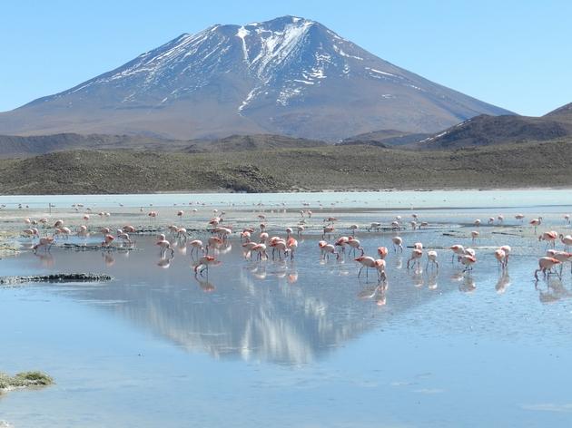 Désert de Siloli, dans le Sud Lipez bolivien