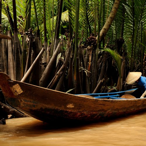 mekong delta – typical boats