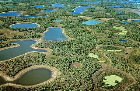 pantanal_vue_aerienne_1