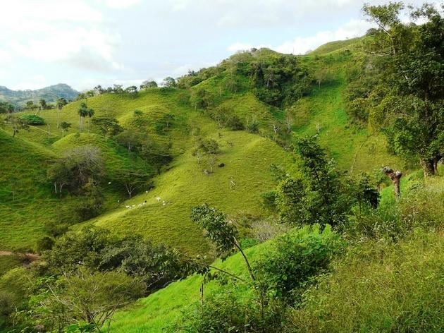 paysage de la vallée de dota, costa rica