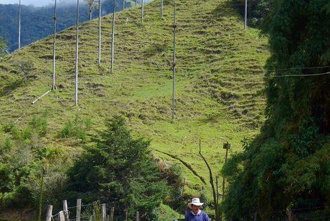 voyage-colombie-visite-salento-3