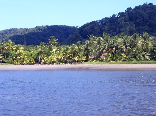 côte pacifique costa rica uvita