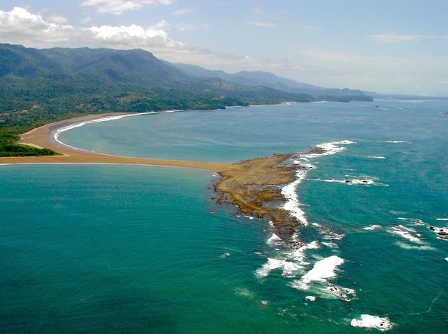 côte pacifique costa rica marino ballena