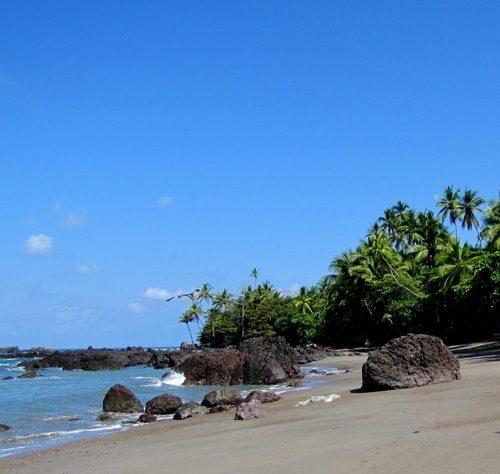 voyage-costa-rica-parc-national-corcovado