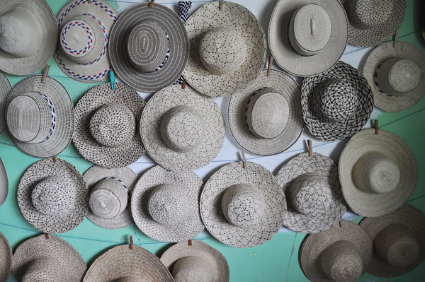 Panama :  la route du chapeau « pintado »