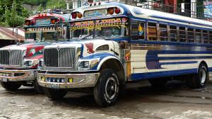 Les fameux Chicken Bus