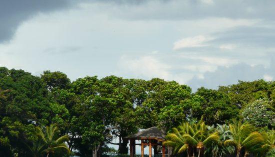 NIC – Granada – lac Nicaragua – OCT 08 (8)