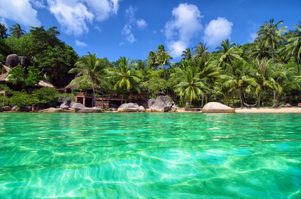 Tropical Paradise - lovely romantic beach view