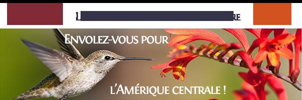 Newsletter – Gagnez un vol pour l'Amérique Centrale!