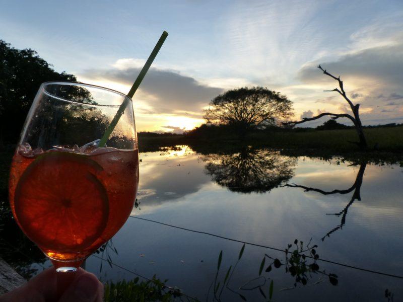 Pantanal coucher de soleil