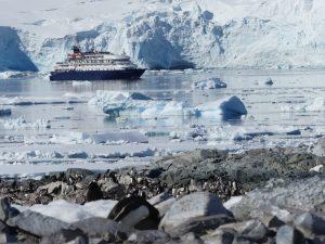 Glaciers et manchots