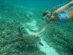 Snorkeling à Gili Air