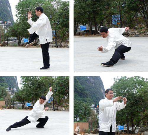 Maître de Tai-chi