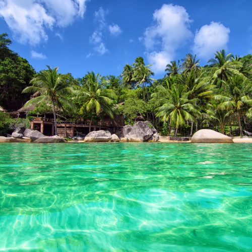 Tropical Paradise – lovely romantic beach view