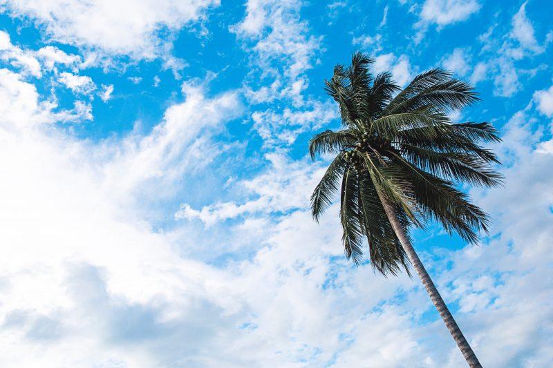 visiter 4000 îles laos