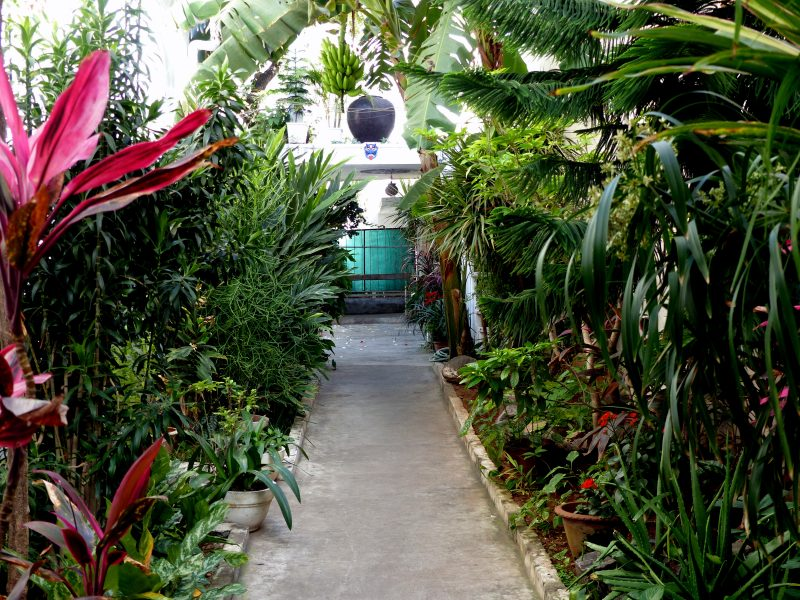 jardin activités pondichéry