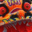 Dragon – pascal-bernardon-1389140-unsplash