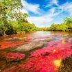 River landscape in Colombia, Cano Cristales