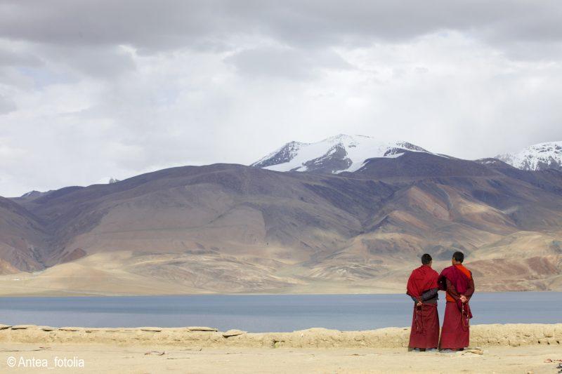 Moines au Ladakh en Inde,