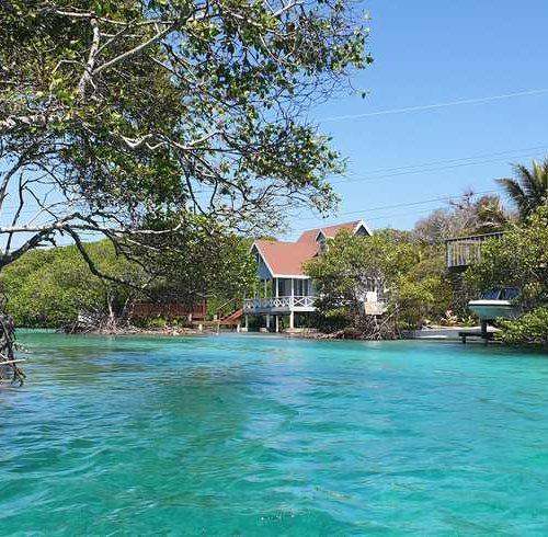 Tour manglares Roatan Honduras