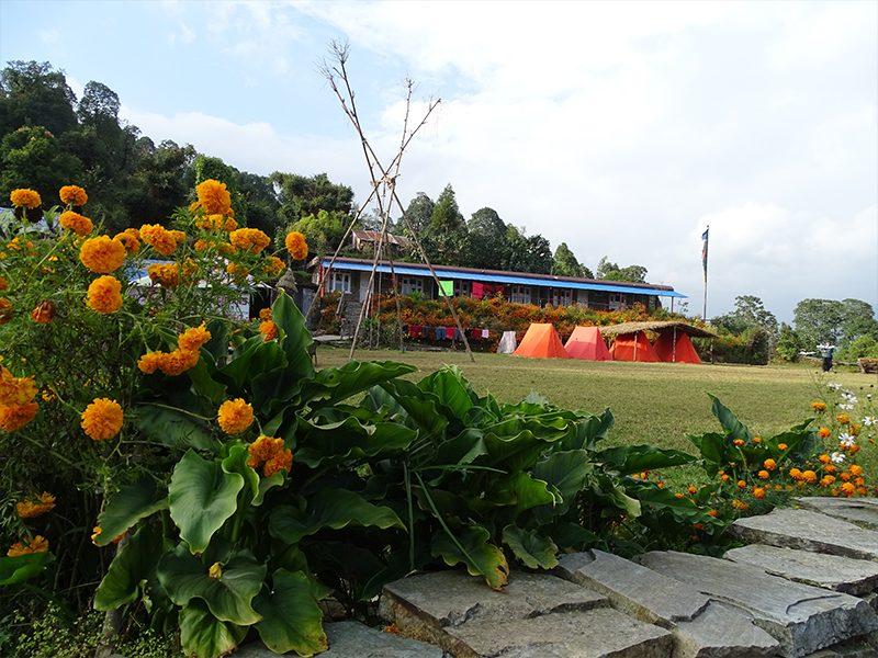 Le camp australien, Népal