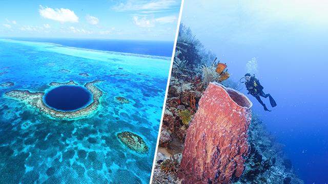 belize barriere de corails