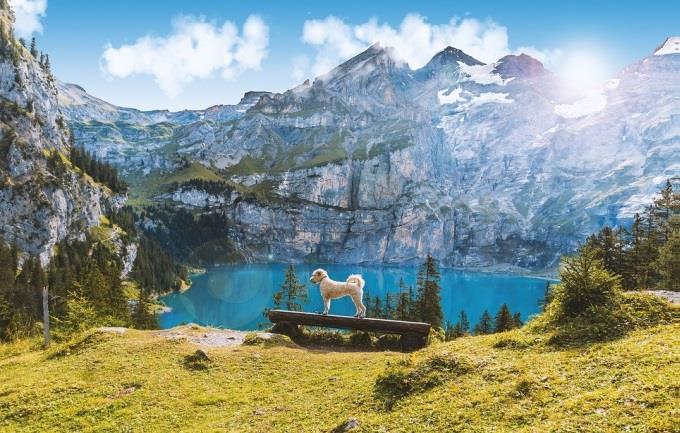 Oberland Bernois - lac